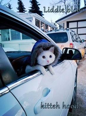Liddle blooo  kitteh hood...