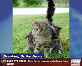 Breaking Strike News - KKPS PTA CHAIR:  Give those teachers whatever they want!