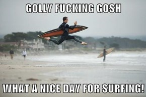 GOLLY FUCKING GOSH  WHAT A NICE DAY FOR SURFING!
