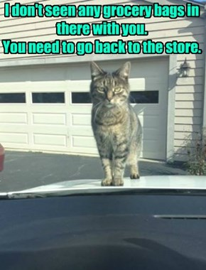 I don't seen any grocery bags in there with you.  You need to go back to the store.