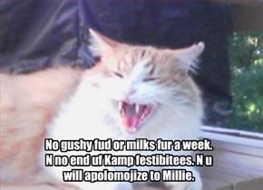 Mrs. Doonawtdoodat punishes bully kitty.
