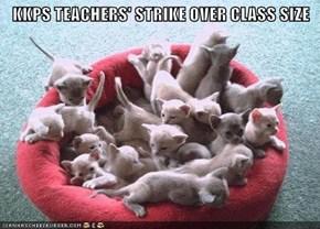 KKPS TEACHERS' STRIKE OVER CLASS SIZE