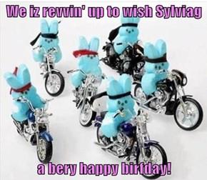 We iz revvin' up to wish Sylviag  a bery happy birfday!