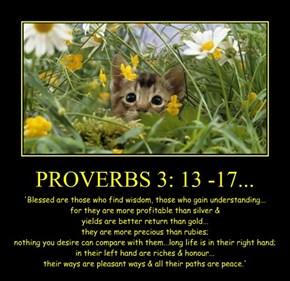 PROVERBS 3: 13 -17...