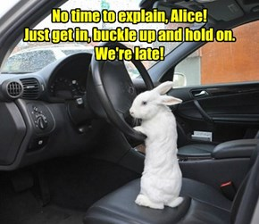 No time to explain, Alice! Just get in, buckle up and hold on. We're late!