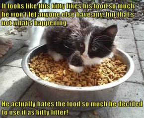 It looks like this kitty likes his food so much he won't let anyone else have any, but that's not what's happening.  He actually hates the food so much he decided to use it as kitty litter!