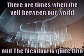 There are times when the veil between our world  and The Meadow is quite thin