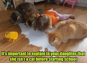 It's important to explain to your daughter that she isn't a cat before starting school