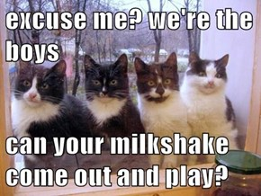 excuse me? we're the boys  can your milkshake come out and play?