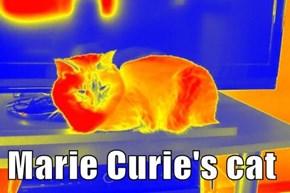 Marie Curie's cat