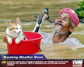 Breaking Weather News - A nearby county close to Kamp Kuppykakes was flooded out by rain from Hurricane Cat. However, KKPS is expecting less rain but more tornado activity!