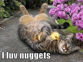 I luv nuggets