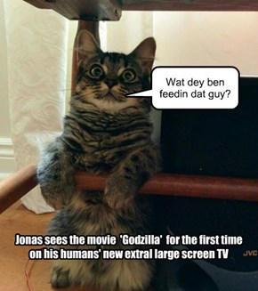 Jonas sees the movie  'Godzilla'  for the first time  on his humans' new extral large screen TV
