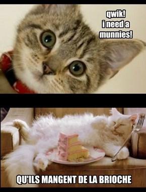 French Cat Revolution