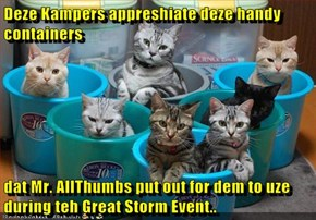 Deze Kampers appreshiate deze handy containers  dat Mr. AllThumbs put out for dem to uze during teh Great Storm Event..