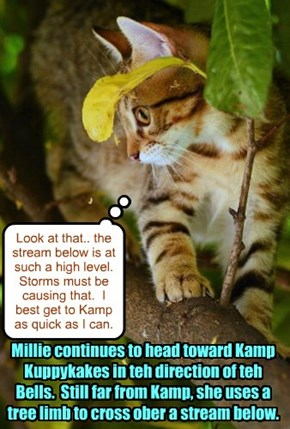 With sounds of ominous thunder behind her, Shyster Millie heads toward Kamp for hoped-for safety..