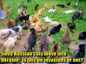 5000 Russian cats move into Ukraine:  Is this an invasions or not?