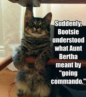 "Suddenly,  Bootsie understood what Aunt Bertha meant by ""going commando."""