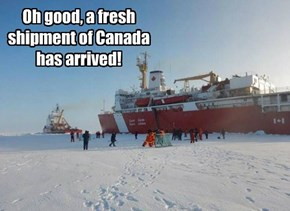Oh good, a fresh shipment of Canada has arrived!