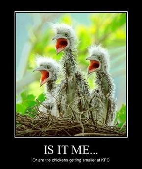 IS IT ME...
