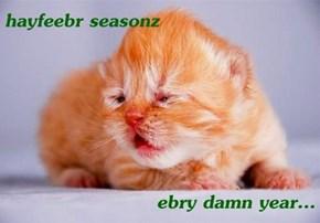 hayfeebr seasonz  ebry damn year...