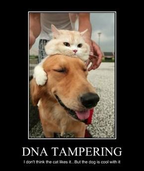 DNA TAMPERING