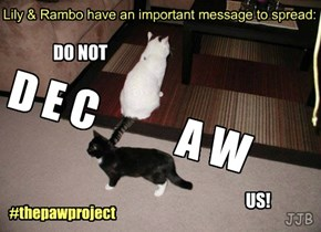 Do Not Declaw!