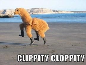 CLIPPITY CLOPPITY
