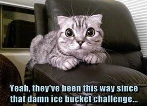 Yeah, they've been this way since that damn ice bucket challenge...