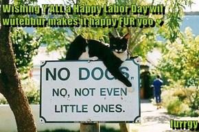 Wishing Y'ALL a Happy Labor Day wif wutebbur makes it happy FUR yoo ♥  furrgy