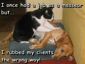 I once had a job as a masseur but..  I rubbed my clients                the wrong way!