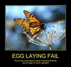 EGG LAYING FAIL