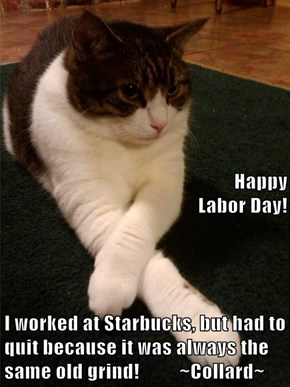 Happy Labor Day! I worked at Starbucks, but had to quit because it was always the same old grind!          ~Collard~