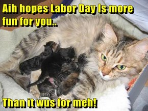 Aih hopes Labor Day Is more fun for you..  Than it wus for meh!