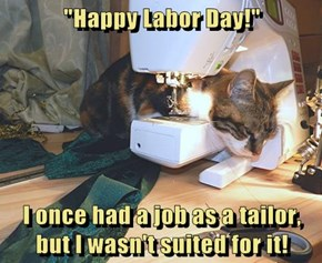"""Happy Labor Day!""  I once had a job as a tailor, but I wasn't suited for it!"
