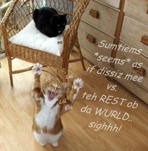 Things WILL get bettuh... and there is ALWAYS Basement Cat, LOL :P  BE HAPPY ANYWAY!!!