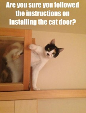 Are you sure you followed the instructions on installing the cat door?