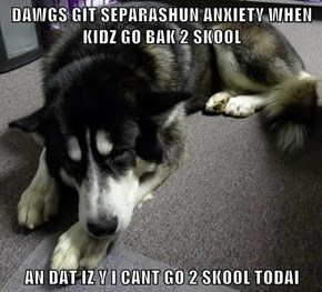 DAWGS GIT SEPARASHUN ANXIETY WHEN KIDZ GO BAK 2 SKOOL  AN DAT IZ Y I CANT GO 2 SKOOL TODAI