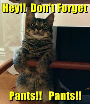 Hey!!  Don't Forget   Pants!!   Pants!!
