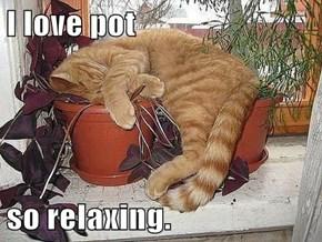 I love pot  so relaxing.