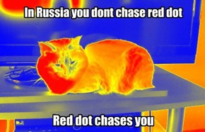 In Russia you dont chase red dot