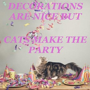 DECORATIONS ARE NICE BUT CATS MAKE THE PARTY
