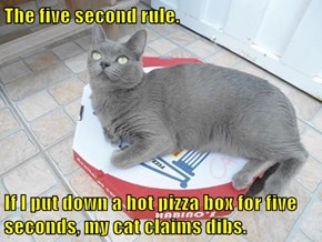 The five second rule.  If I put down a hot pizza box for five seconds, my cat claims dibs.