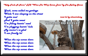 """Kitty Finds A Home"" (TTO ""When The Whip Comes Down"" by The Rolling Stones)"