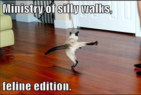 Ministry of silly walks,  feline edition.