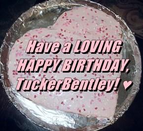 Have a LOVING HAPPY BIRTHDAY, TuckerBentley! ♥