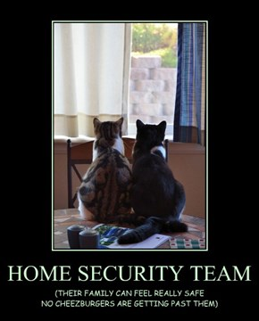 HOME SECURITY TEAM