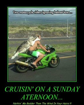 CRUISIN' ON A SUNDAY ATERNOON...