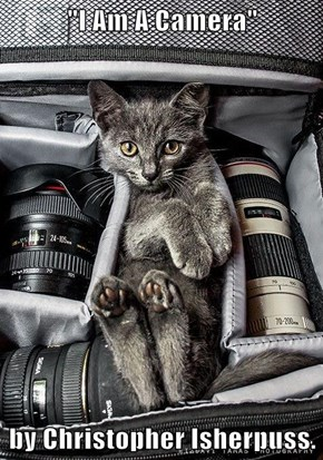 """I Am A Camera""  by Christopher Isherpuss."