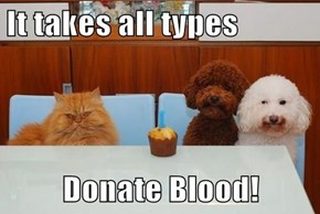 It takes all types  Donate Blood!